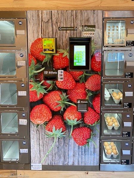 module de paiement habillage fraises